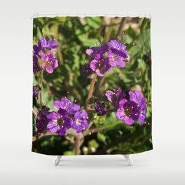 Notch-Leaved Phacelia - Desert Wildflower Shower Curtain