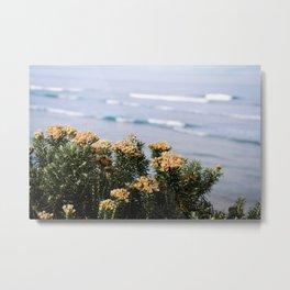 Flowers of Lorne Metal Print
