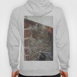 bird in nest Hoody