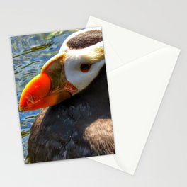Puffin Swim Stationery Cards
