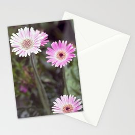 Longwood Gardens Autumn Series 307 Stationery Cards