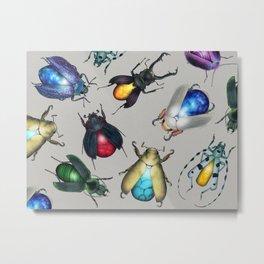 Colorful Mineral Beetles Metal Print
