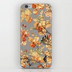 Dogwood Quilt iPhone & iPod Skin