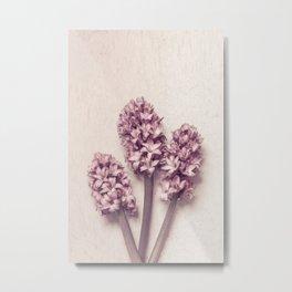 Three Pink Hyacinths Metal Print