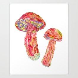 Candy Apple Bolete Mushroom Art Print