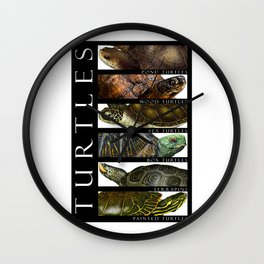 Turtles of the World Wall Clock