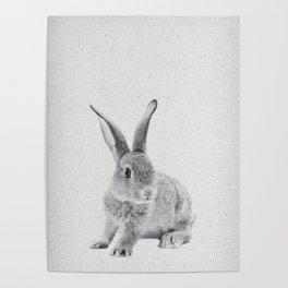 Rabbit 25 Poster