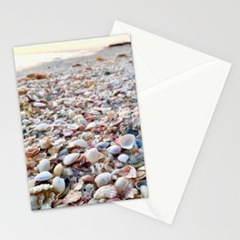 Shells in Sunset Stationery Cards