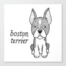 Dog Breeds: Boston Terrier Canvas Print