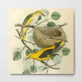 Busy Birds Metal Print