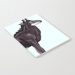 Antelope Notebook