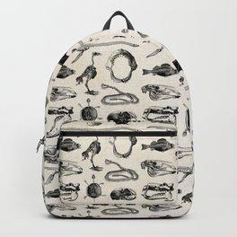 Animal Bones Backpack