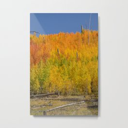 Autumn Colors - North_Rim Grand_Canyon, AZ Metal Print
