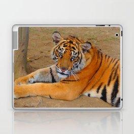 The Gaze of a Tiger Laptop & iPad Skin