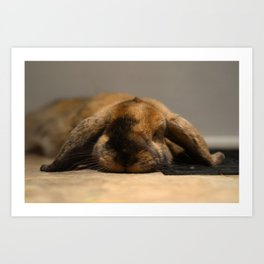 Sebastian the Rabbit Art Print