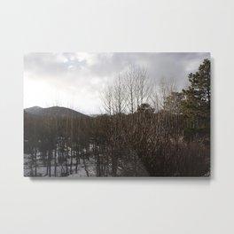 Rocky Mountain Nat'l Park I Metal Print