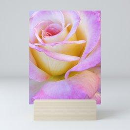 Pastel Rose Mini Art Print