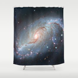 Stellar Nursery NGC 1672. Spiral galaxy in the constellation Dorado Shower Curtain