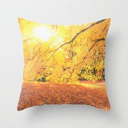 New York City Autumn Sun Throw Pillow