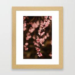 Simply Spring Framed Art Print