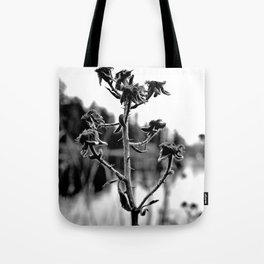 Lakeside view Tote Bag