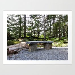 Stop, sit down and just listen to the nature Art Print