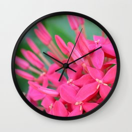 Pink Petals CR Wall Clock