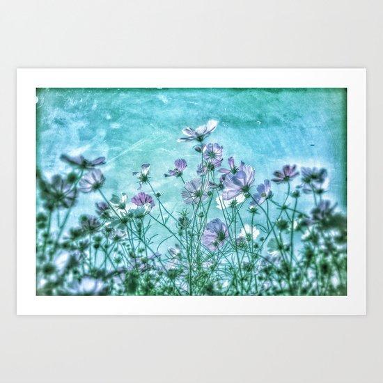 Cosmea Ocean Heaven Art Print