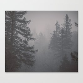 Forest Empire Canvas Print