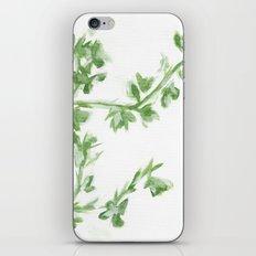 Summer Leaves iPhone & iPod Skin