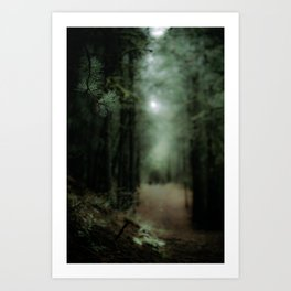 In the forest of Washington state, ponderosa pine trees Art Print