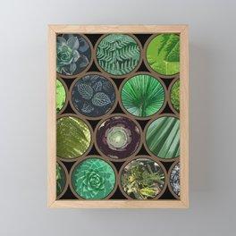 Green Garden Windows Framed Mini Art Print