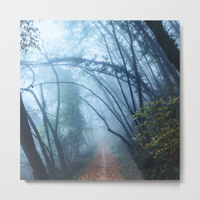The Forest Beckons Metal Print