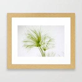 Papyrus - JUSTART (c) Framed Art Print