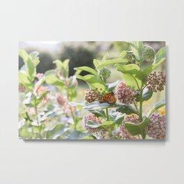 Butterflies in the Garden Metal Print