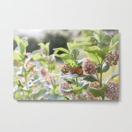 Butterflies in the Garden Metal Print