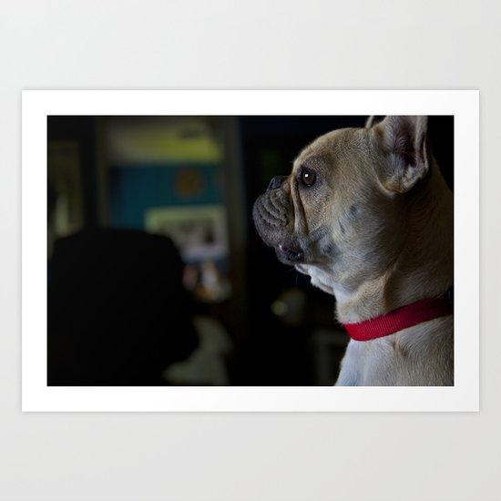 Sophie the French Bulldog Art Print