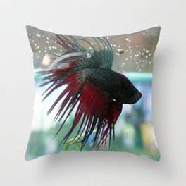 Fighter Fish Throw Pillow