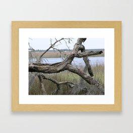 Quiet on the Intercoastal Framed Art Print