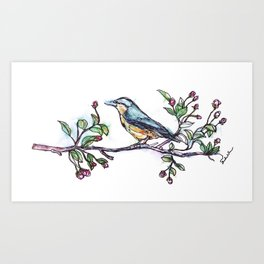 Bird on a Branch (drawn with one, continuous line) Art Print