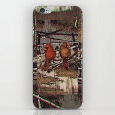 Untitled 3 iPhone & iPod Skin