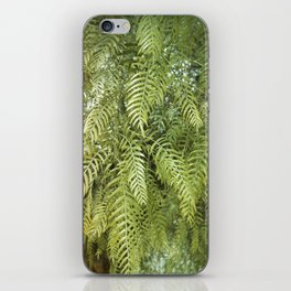 Green Tree. Vegetal Photography iPhone Skin