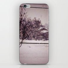 Winter in Utah iPhone & iPod Skin