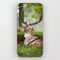 bambi iPhone & iPod Skins featuring Bambi  :)  by Ironia Art