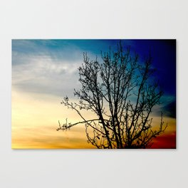 All of the lights. Canvas Print