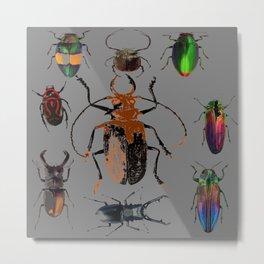 NATURE LOVERS BEETLE BUG COLLECTION ART Metal Print