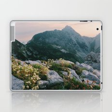 Mountain flowers at sunrise Laptop & iPad Skin
