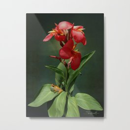 Canna Lily and Hourglass Tree Frog Metal Print
