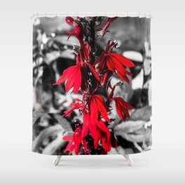 Cardinal Flower Shower Curtain