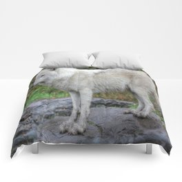 Arctic Wolf HDR Comforters